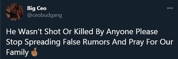 Baby CEO death update tweet.